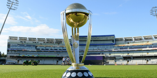 Cricket World Cup Final Tickets